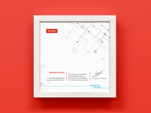 Rio Tinto Expert Certificate